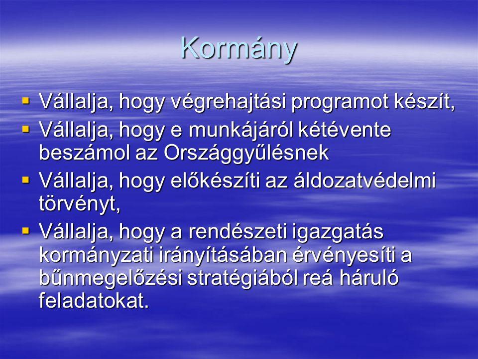 Kormány  Vállalja, hogy végrehajtási programot készít,  Vállalja, hogy e munkájáról kétévente beszámol az Országgyűlésnek  Vállalja, hogy előkészít