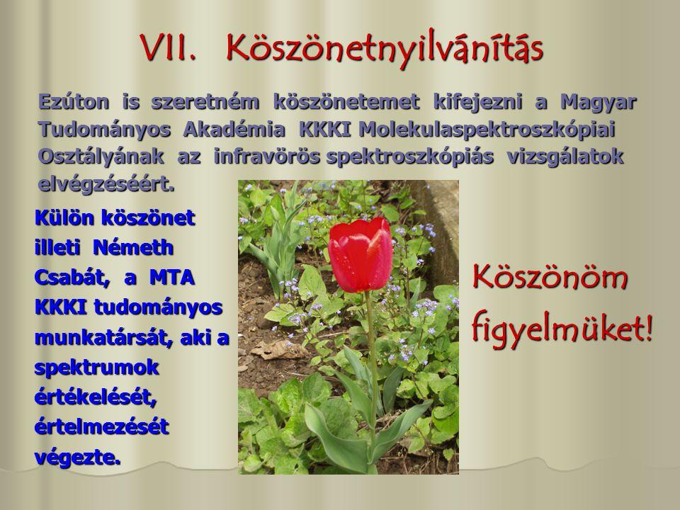 VII. Köszönetnyilvánítás Ezúton is szeretném köszönetemet kifejezni a Magyar Tudományos Akadémia KKKI Molekulaspektroszkópiai Osztályának az infravörö