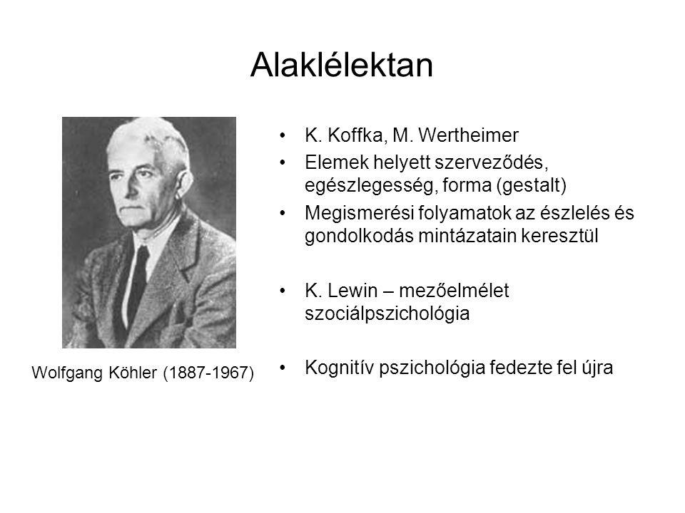 Alaklélektan K. Koffka, M. Wertheimer Elemek helyett szerveződés, egészlegesség, forma (gestalt) Megismerési folyamatok az észlelés és gondolkodás min