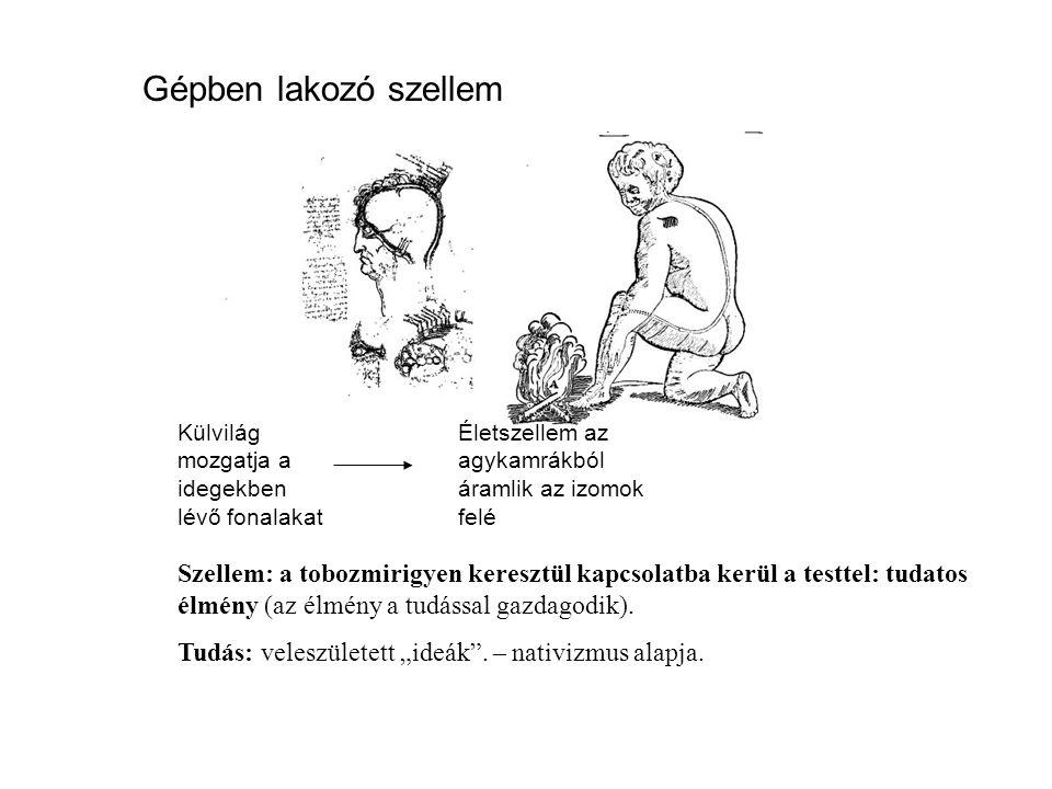 Fenomenológiai pszichológia Maslow, Rogers Humanisztikus pszichológia önkiteljesítés