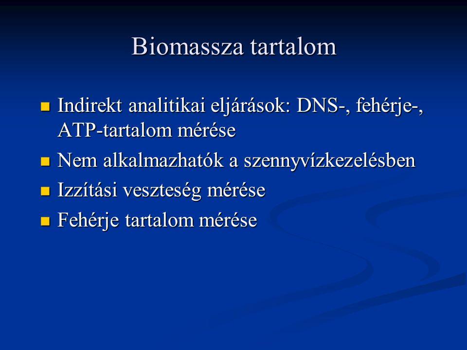Biomassza tartalom Indirekt analitikai eljárások: DNS-, fehérje-, ATP-tartalom mérése Indirekt analitikai eljárások: DNS-, fehérje-, ATP-tartalom mérése Nem alkalmazhatók a szennyvízkezelésben Nem alkalmazhatók a szennyvízkezelésben Izzítási veszteség mérése Izzítási veszteség mérése Fehérje tartalom mérése Fehérje tartalom mérése