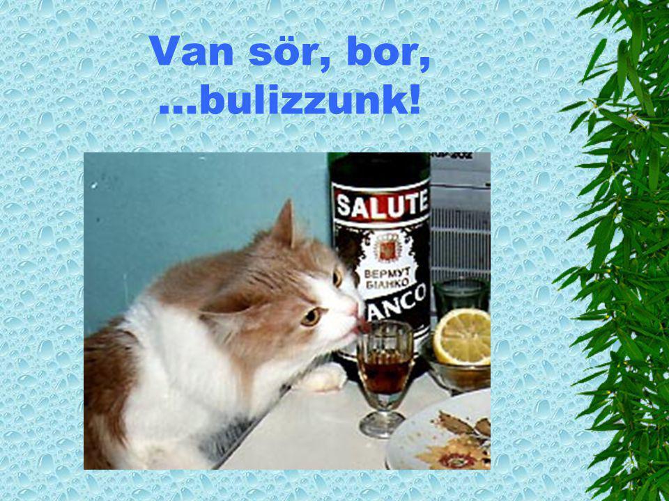 Van sör, bor, …bulizzunk!