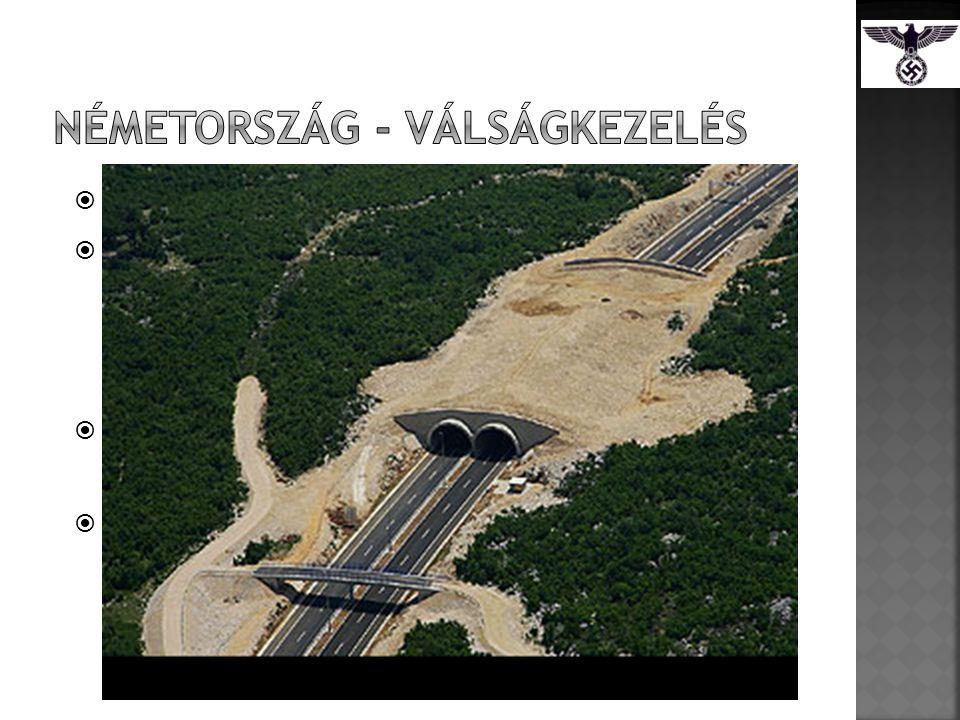  Hasonló a New Dealhez  Közmunkaprogramok  Autobahn  Vasutak, folyók  660 ezer munkás  2 millió  Szakszervezetek  Német Munka Front  Katonai kiadások  Csökken a munkanélküliség  Gazdaságot élénkíti