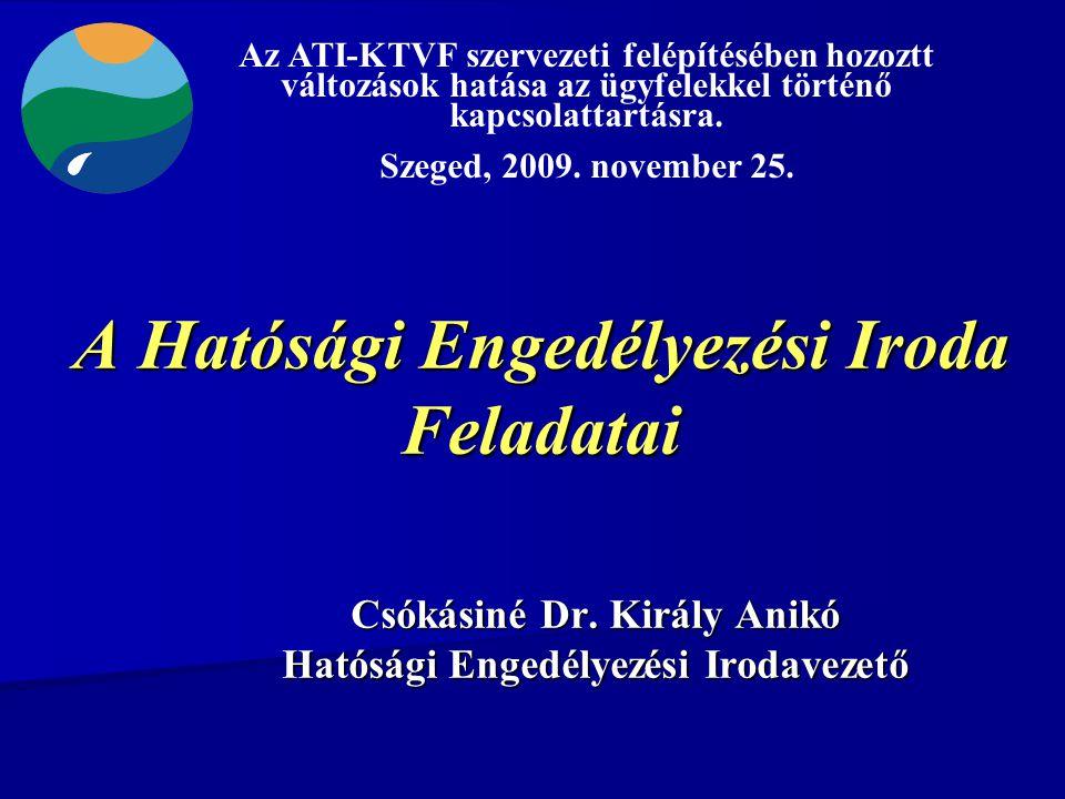 A Hatósági Engedélyezési Iroda Feladatai Csókásiné Dr.