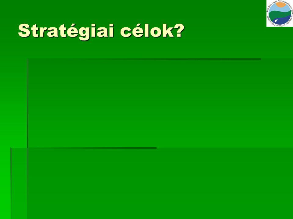Stratégiai célok?