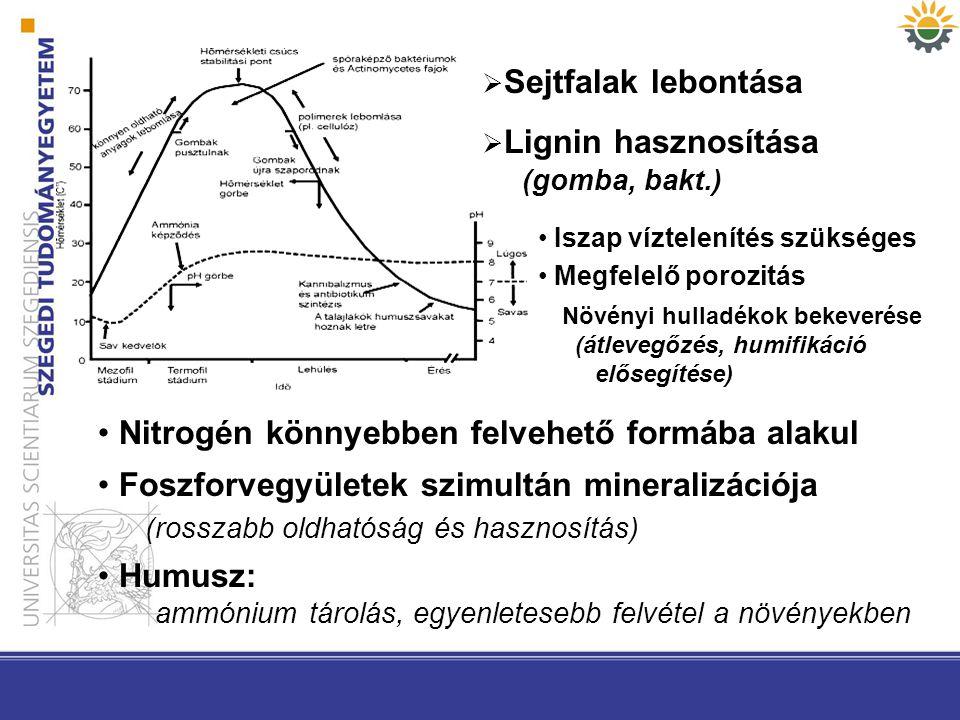  Sejtfalak lebontása  Lignin hasznosítása (gomba, bakt.) Növényi hulladékok bekeverése (átlevegőzés, humifikáció elősegítése) Nitrogén könnyebben fe