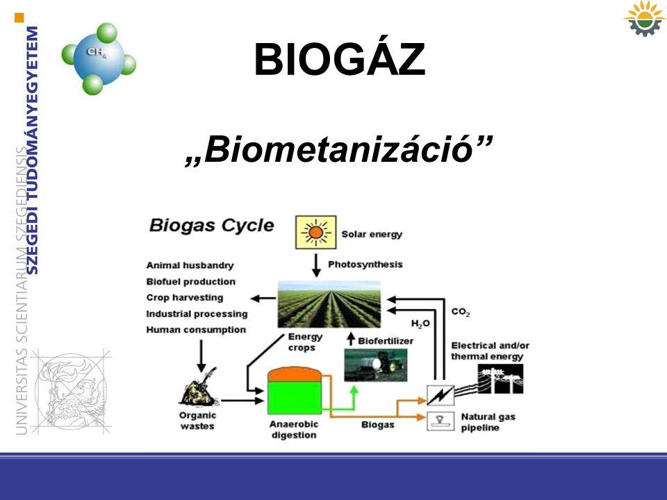 "BIOGÁZ ""Biometanizáció"""