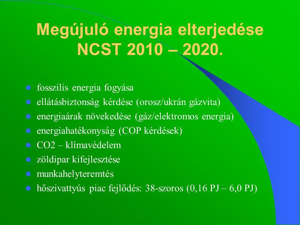 fosszilis energia fogyása ellátásbiztonság kérdése (orosz/ukrán gázvita) energiaárak növekedése (gáz/elektromos energia) energiahatékonyság (COP kérdések) CO2 – klímavédelem zöldipar kifejlesztése munkahelyteremtés hőszivattyús piac fejlődés: 38-szoros (0,16 PJ – 6,0 PJ) Megújuló energia elterjedése NCST 2010 – 2020.