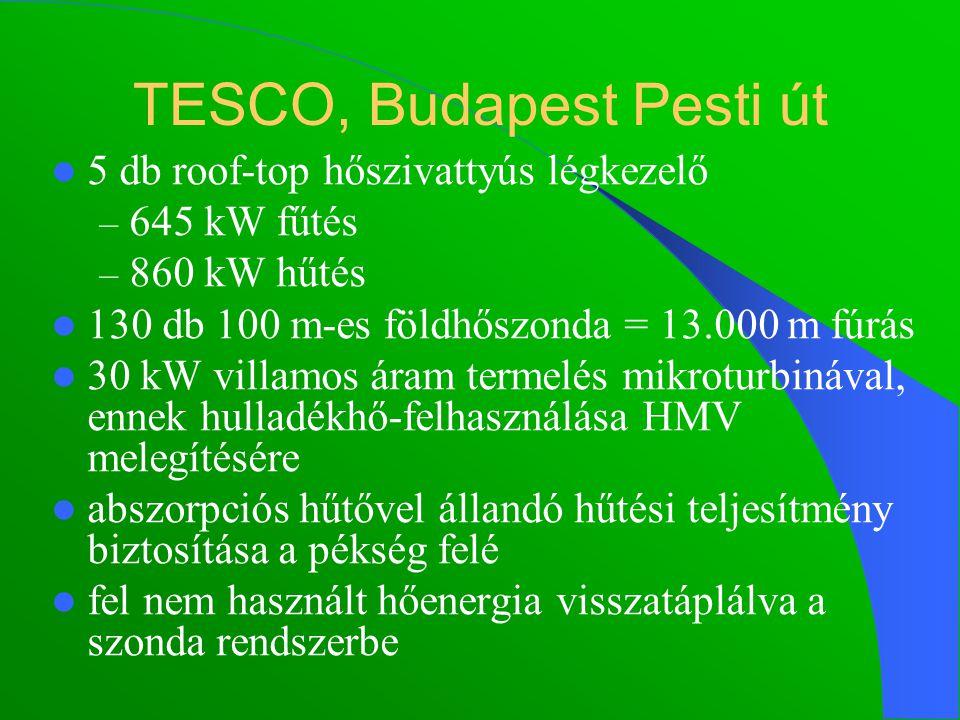 TESCO, Budapest Pesti út 5 db roof-top hőszivattyús légkezelő – 645 kW fűtés – 860 kW hűtés 130 db 100 m-es földhőszonda = 13.000 m fúrás 30 kW villamos áram termelés mikroturbinával, ennek hulladékhő-felhasználása HMV melegítésére abszorpciós hűtővel állandó hűtési teljesítmény biztosítása a pékség felé fel nem használt hőenergia visszatáplálva a szonda rendszerbe