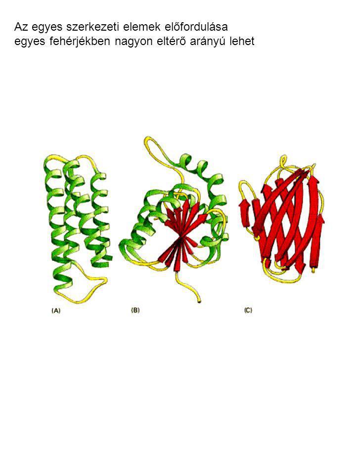 Az egyes szerkezeti elemek előfordulása egyes fehérjékben nagyon eltérő arányú lehet