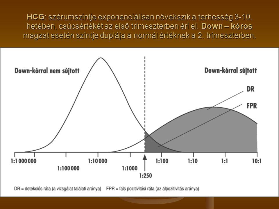 HCG: szérumszintje exponenciálisan növekszik a terhesség 3-10. hetében, csúcsértékét az első trimeszterben éri el. Down – kóros magzat esetén szintje