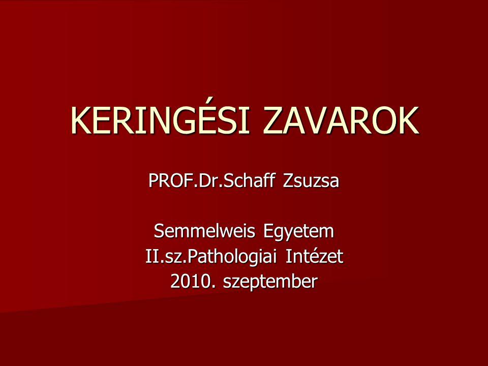 KERINGÉSI ZAVAROK PROF.Dr.Schaff Zsuzsa Semmelweis Egyetem II.sz.Pathologiai Intézet 2010. szeptember