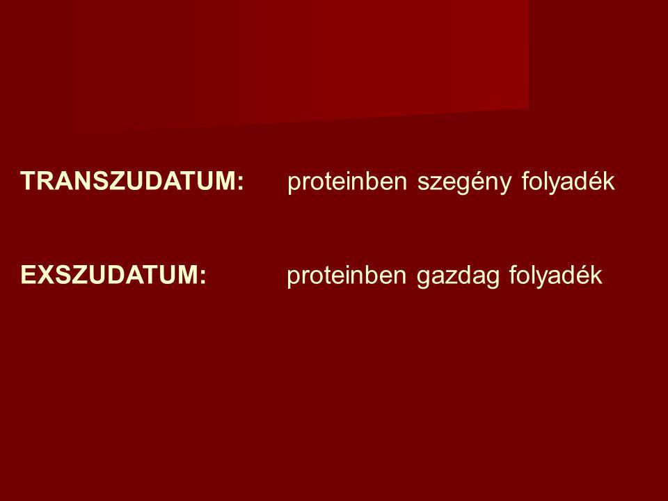 TRANSZUDATUM:proteinben szegény folyadék EXSZUDATUM: proteinben gazdag folyadék