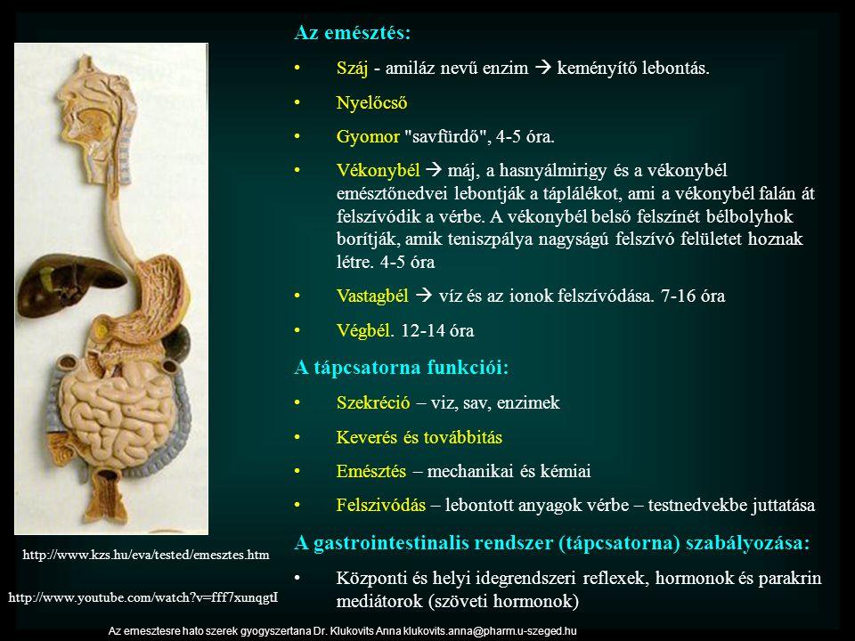 http://www.kzs.hu/eva/tested/emesztes.htm Az emésztés: Száj - amiláz nevű enzim  keményítő lebontás. Nyelőcső Gyomor