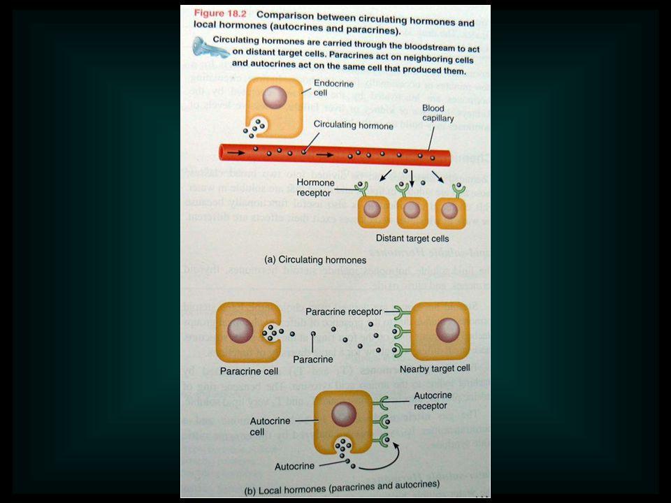 Hormonok hatásmechanizmusa