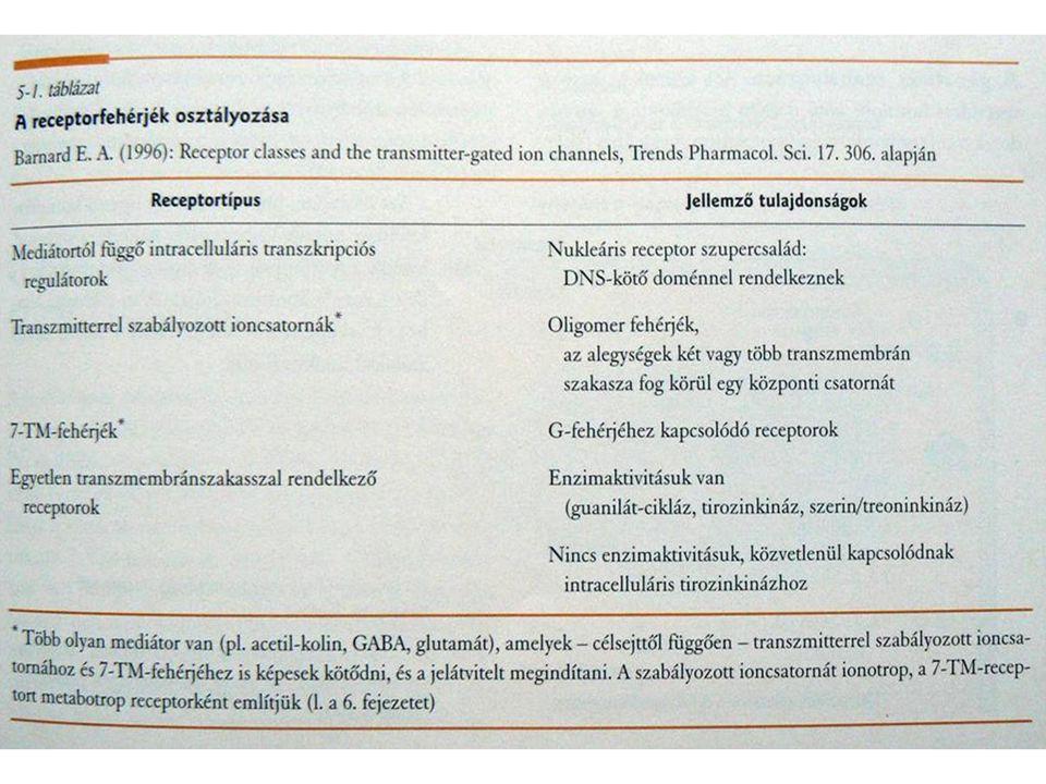 Glutamát receptorok Receptorok csoportosítása: Agonisták és antagonisták valamint gén szekvencia alapján http://www.ucl.ac.uk/~smgxt01/frameh.htm?page=glutamat.htm