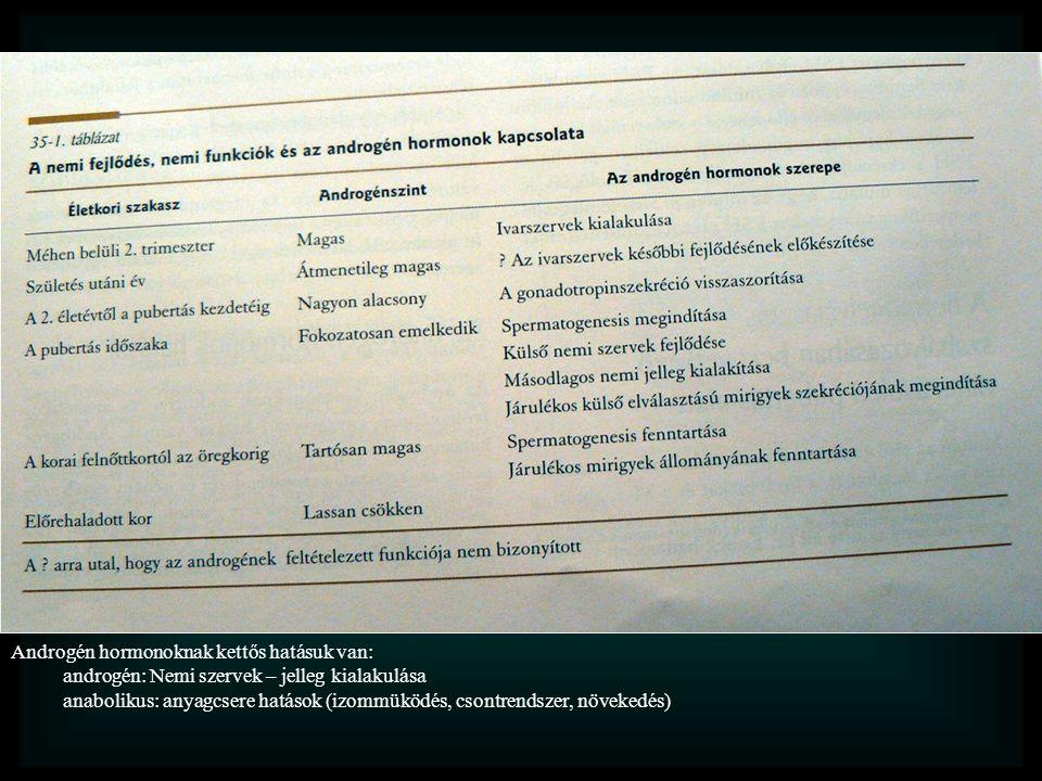 Androgén hormonoknak kettős hatásuk van: androgén: Nemi szervek – jelleg kialakulása anabolikus: anyagcsere hatások (izommüködés, csontrendszer, növek