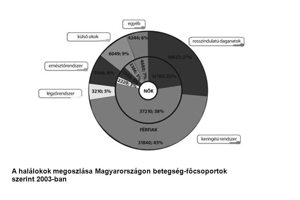 A halálokok megoszlása Magyarországon betegség-fôcsoportok szerint 2003-ban