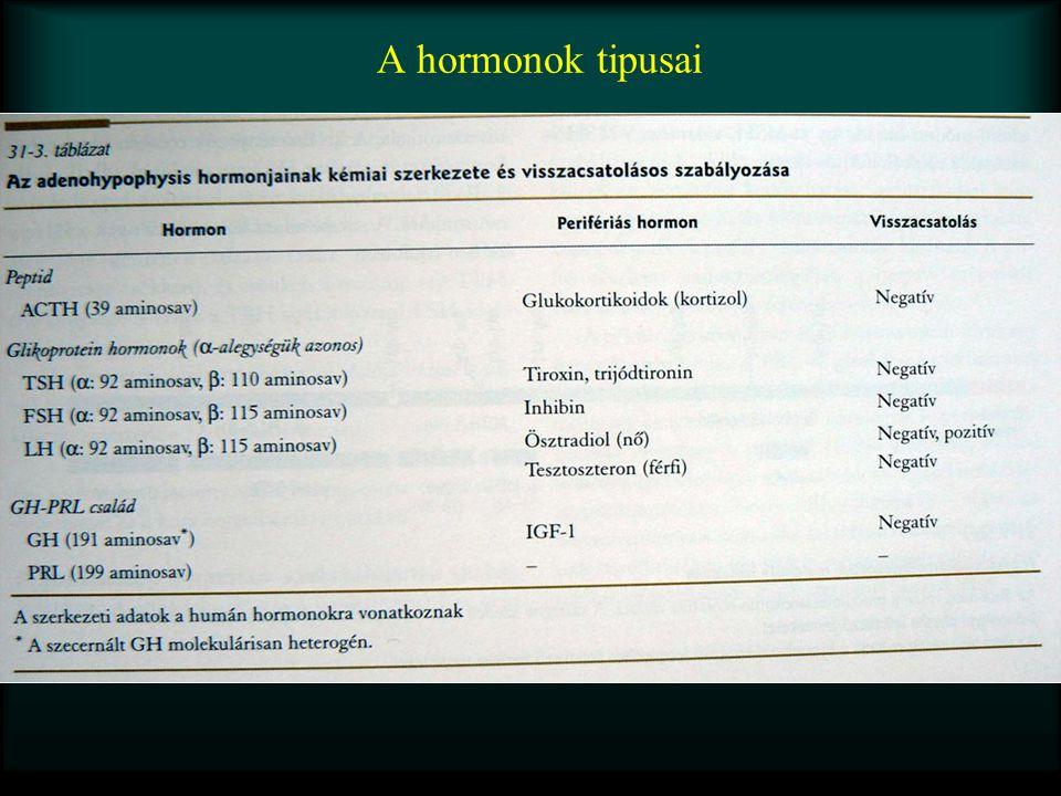 A hormonok tipusai