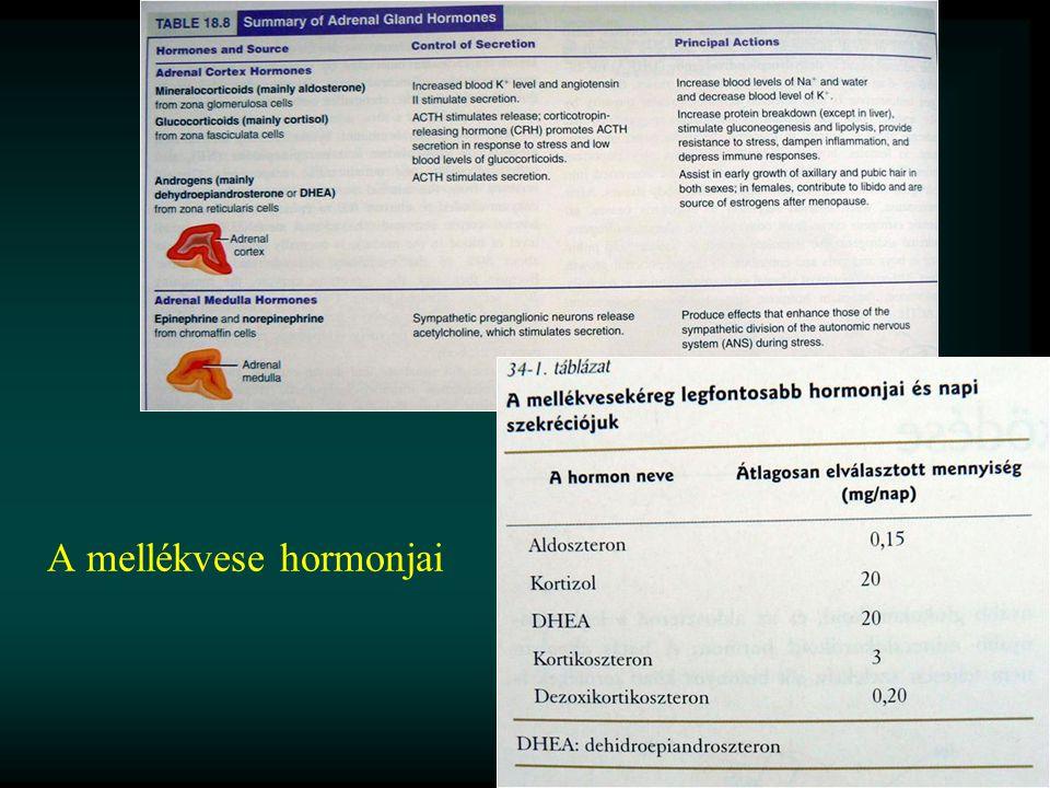 A mellékvese hormonjai
