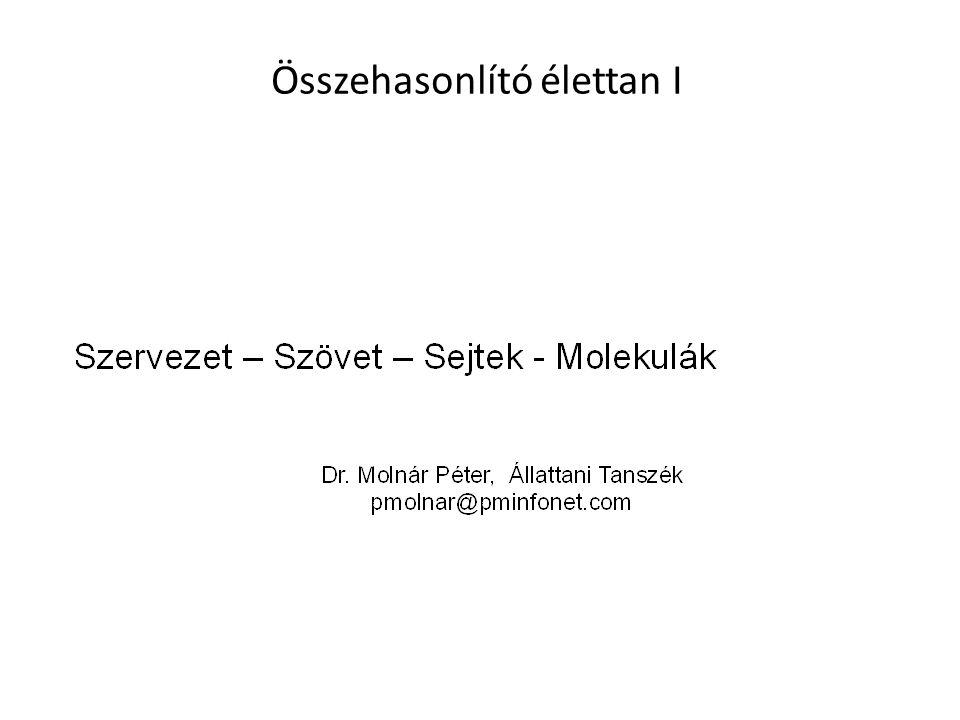 Kontakt jelátvitel két sejt között (Később sejtek és az extracelluláris mátrix között)