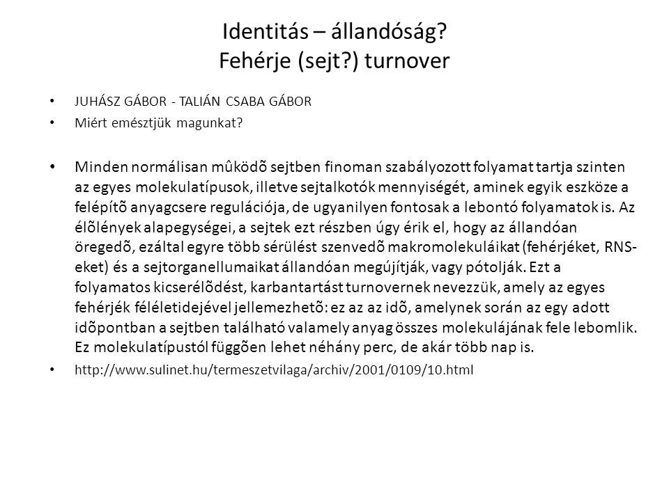 Identitás – állandóság.