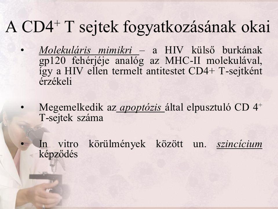 A CD4 + T sejtek fogyatkozásának okai Molekuláris mimikri – a HIV külső burkának gp120 fehérjéje analóg az MHC-II molekulával, így a HIV ellen termelt