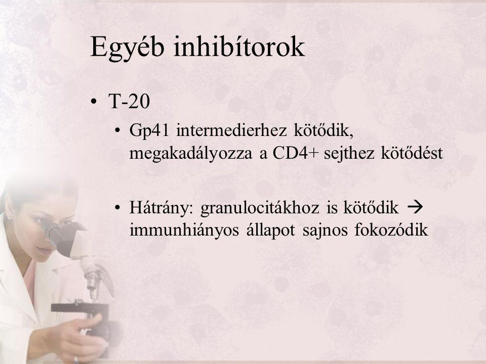 Egyéb inhibítorok T-20 Gp41 intermedierhez kötődik, megakadályozza a CD4+ sejthez kötődést Hátrány: granulocitákhoz is kötődik  immunhiányos állapot