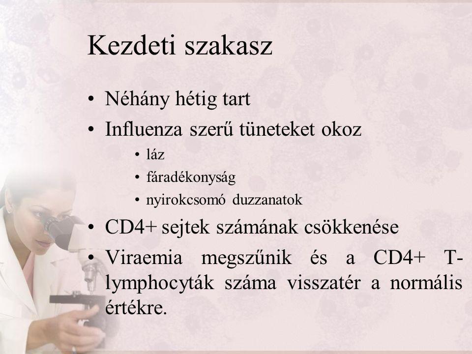 Kezdeti szakasz Néhány hétig tart Influenza szerű tüneteket okoz láz fáradékonyság nyirokcsomó duzzanatok CD4+ sejtek számának csökkenése Viraemia meg