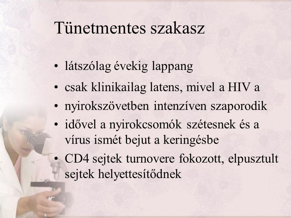 AIDS szakasz fertőződés után 8-12 évvel a CD4 + T- sejtek száma kritikus érték alá süllyed nem képes a szervezet kialakítani az immunválaszt két- három évig tart egysejtűek, gombák és baktériumok árasztják el a szervezetet opportunista fertőzések oltják ki a beteg életét