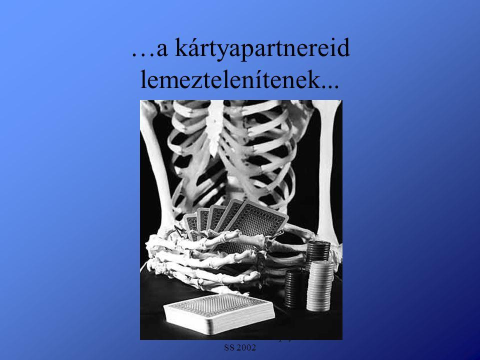 Detlef Krasemann DHV Speyer SS 2002 …a kártyapartnereid lemeztelenítenek...