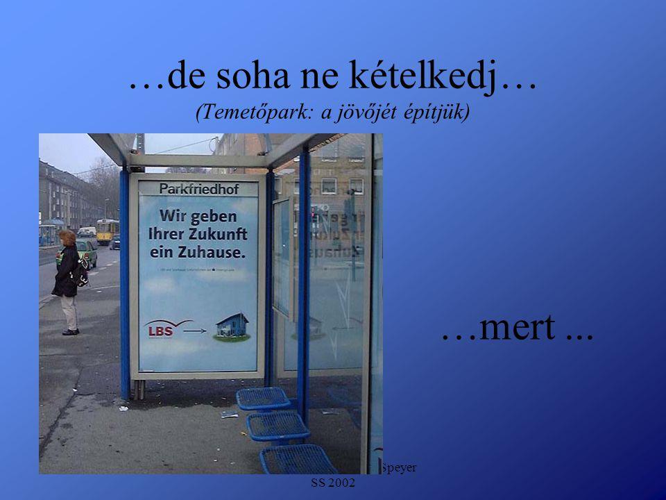 Detlef Krasemann DHV Speyer SS 2002 …de soha ne kételkedj… (Temetőpark: a jövőjét építjük) …mert...