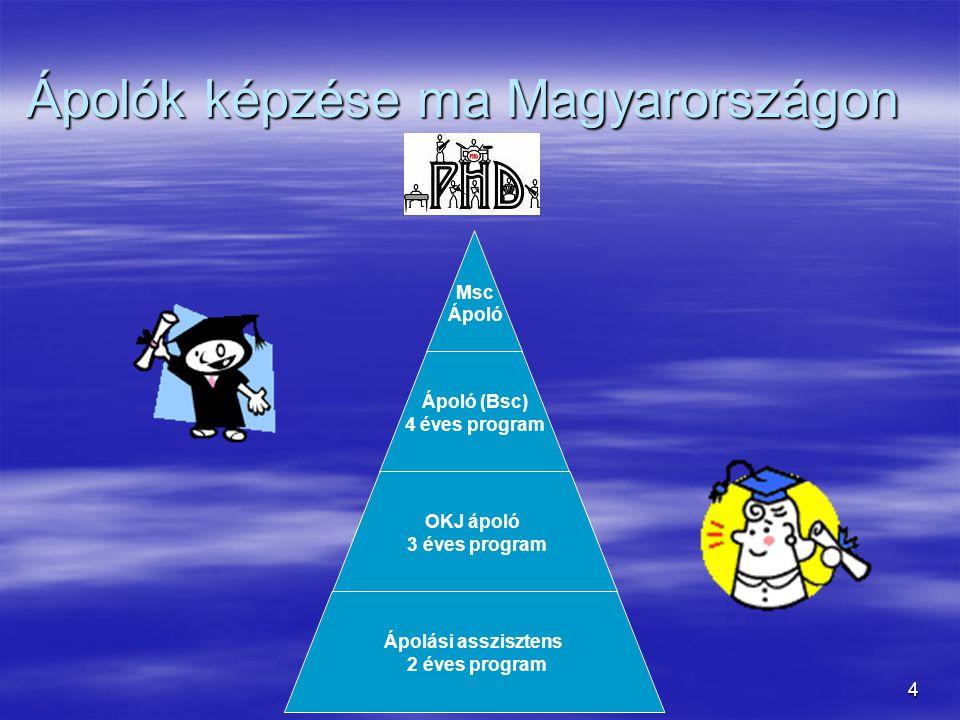 4 Ápolók képzése ma Magyarországon Msc Ápoló Ápoló (Bsc) 4 éves program OKJ ápoló 3 éves program Ápolási asszisztens 2 éves program