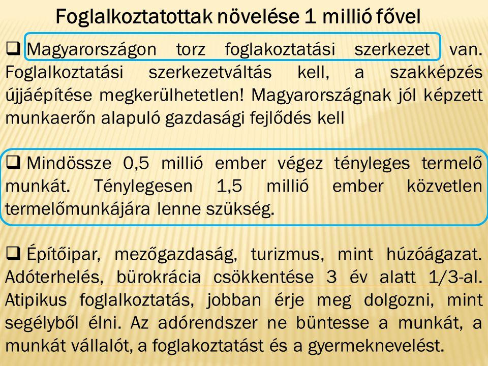  Magyarországon torz foglakoztatási szerkezet van. Foglalkoztatási szerkezetváltás kell, a szakképzés újjáépítése megkerülhetetlen! Magyarországnak j