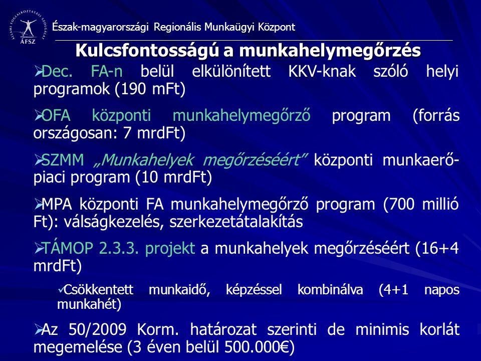 Észak-magyarországi Regionális Munkaügyi Központ Kulcsfontosságú a munkahelymegőrzés  Dec. FA-n belül elkülönített KKV-knak szóló helyi programok (19