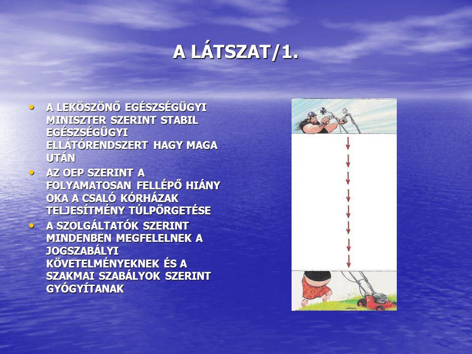 A LÁTSZAT/1.