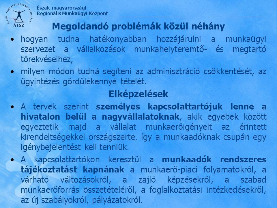 Észak-magyarországi Regionális Munkaügyi Központ Megoldandó problémák közül néhány hogyan tudna hatékonyabban hozzájárulni a munkaügyi szervezet a vál