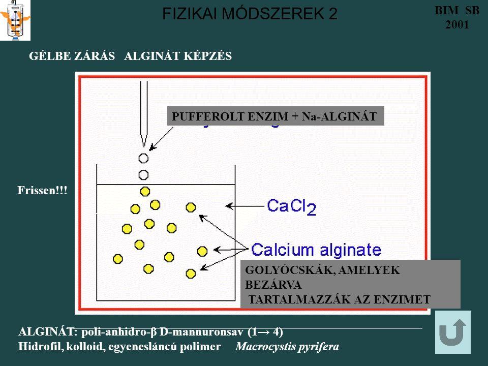 FIZIKAI MÓDSZEREK 2 BIM SB 2001 GÉLBE ZÁRÁS ALGINÁT KÉPZÉS PUFFEROLT ENZIM + Na-ALGINÁT GOLYÓCSKÁK, AMELYEK BEZÁRVA TARTALMAZZÁK AZ ENZIMET ALGINÁT: poli-anhidro-β D-mannuronsav (1→ 4) Hidrofil, kolloid, egyenesláncú polimer Macrocystis pyrifera Frissen!!!