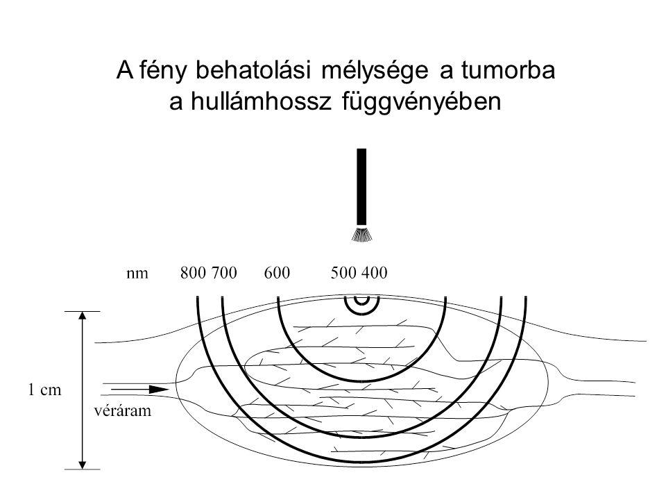A fény behatolási mélysége a tumorba a hullámhossz függvényében