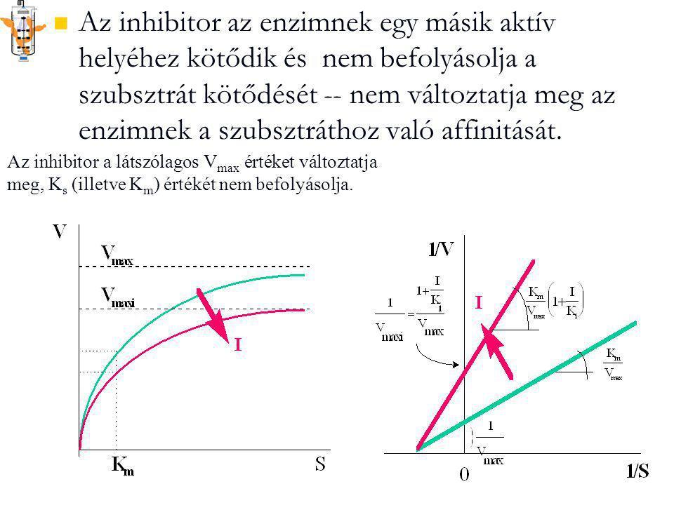 Az inhibitor az enzimnek egy másik aktív helyéhez kötődik és nem befolyásolja a szubsztrát kötődését -- nem változtatja meg az enzimnek a szubsztrátho
