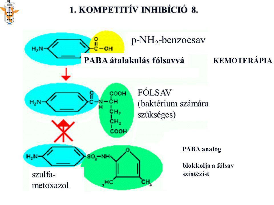 1. KOMPETITÍV INHIBÍCIÓ 8. p-NH 2 -benzoesav PABA átalakulás fólsavvá FÓLSAV (baktérium számára szükséges) PABA analóg blokkolja a fólsav szintézist s