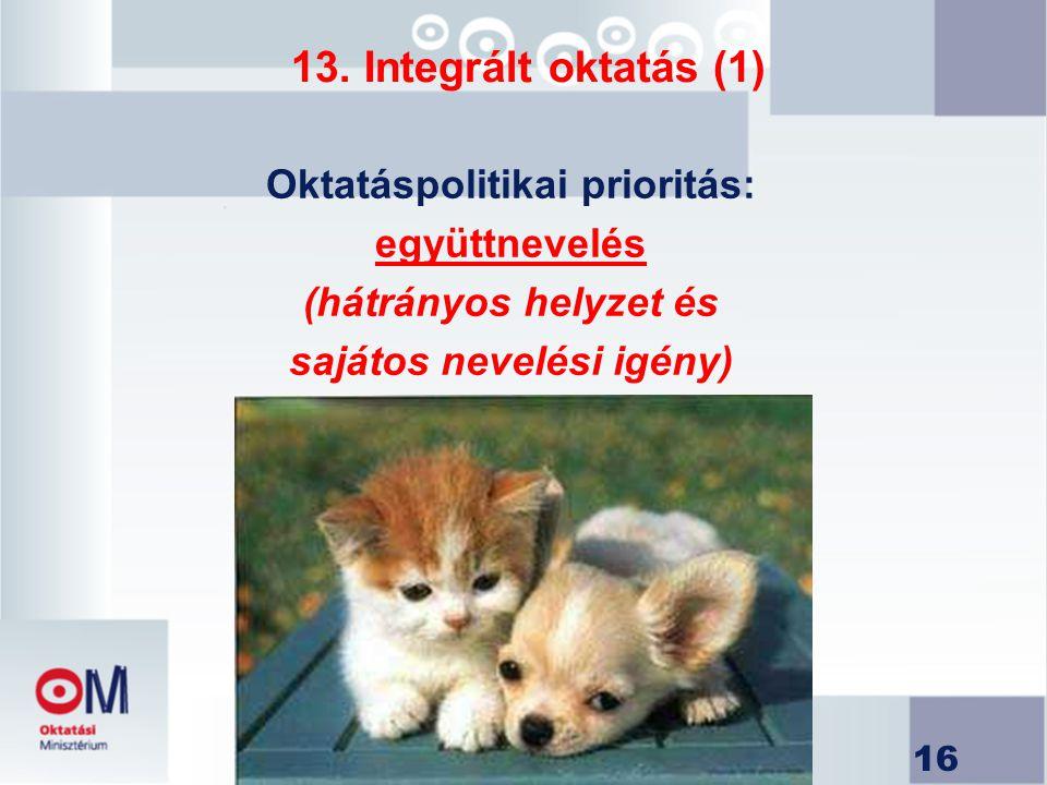 16 13. Integrált oktatás (1) Oktatáspolitikai prioritás: együttnevelés (hátrányos helyzet és sajátos nevelési igény)