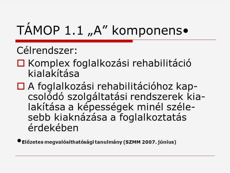 """TÁMOP 1.1 """"A komponens Célrendszer:  Komplex foglalkozási rehabilitáció kialakítása  A foglalkozási rehabilitációhoz kap- csolódó szolgáltatási rendszerek kia- lakítása a képességek minél széle- sebb kiaknázása a foglalkoztatás érdekében Előzetes megvalósíthatósági tanulmány (SZMM 2007."""
