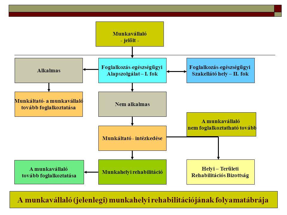 Munkavállaló - jelölt - Foglalkozás-egészségügyi Alapszolgálat – I. fok Nem alkalmas Munkáltató - intézkedése Munkahelyi rehabilitáció Helyi – Terület