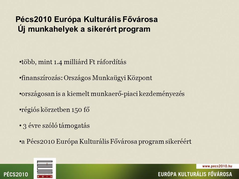 több, mint 1.4 milliárd Ft ráfordítás finanszírozás: Országos Munkaügyi Központ országosan is a kiemelt munkaerő-piaci kezdeményezés régiós körzetben 150 fő 3 évre szóló támogatás a Pécs2010 Európa Kulturális Fővárosa program sikeréért Pécs2010 Európa Kulturális Fővárosa Új munkahelyek a sikerért program