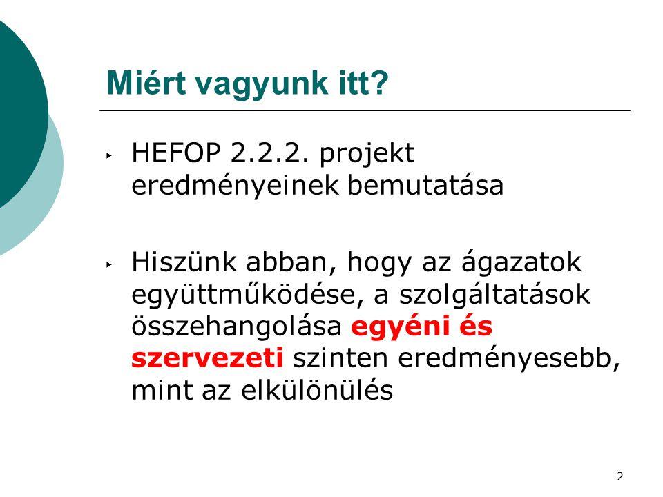 2 Miért vagyunk itt? ‣ HEFOP 2.2.2. projekt eredményeinek bemutatása ‣ Hiszünk abban, hogy az ágazatok együttműködése, a szolgáltatások összehangolása