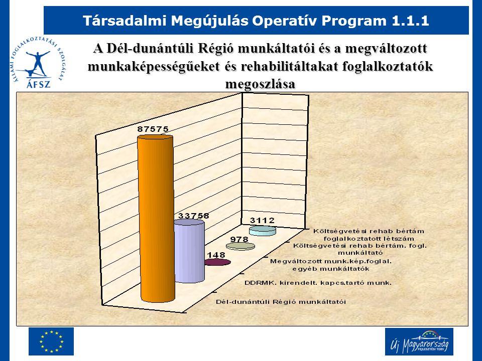 Társadalmi Megújulás Operatív Program 1.1.1 A Dél-dunántúli Régió munkáltatói és a megváltozott munkaképességűeket és rehabilitáltakat foglalkoztatók megoszlása