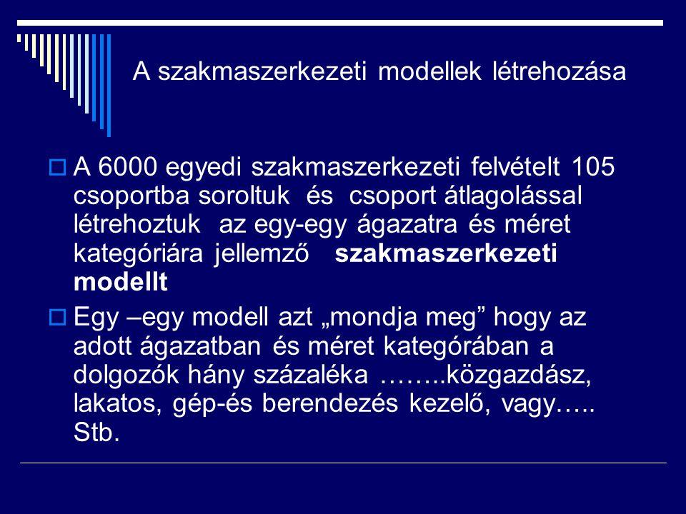 A jelenlegi szakmaszerkezet számszerűsítése  A KSH 2005 évre, a teljes foglalkoztatói körre vonatkozó, telephelyi adatbázisából elkészítettük a tényleges létszámadatokat  21 ágazatra  5 mértekategóriára  19 megyére 7 régióra  A tényleges létszámadatok és a szakmaszerkezeti modellek szorzatai eredményeképpen jutottunk a jelenlegi szakmaszerkezetet tükröző adatokhoz