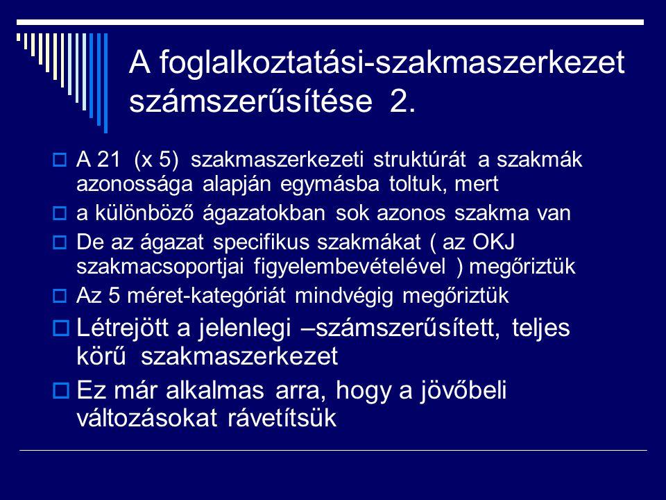 A foglalkoztatási-szakmaszerkezet számszerűsítése 2.  A 21 (x 5) szakmaszerkezeti struktúrát a szakmák azonossága alapján egymásba toltuk, mert  a k
