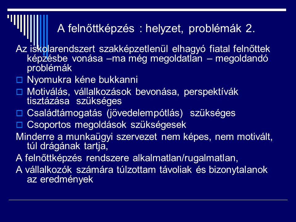 A felnőttképzés : helyzet, problémák 2.